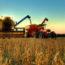 Como Calcular Los Costes De Utilización De Aperos Y Maquinaria Agrícola