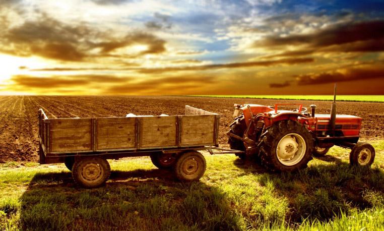 Tractor Remolque Agricola